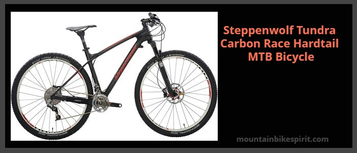 Steppenwolf Tundra Carbon Race Bike